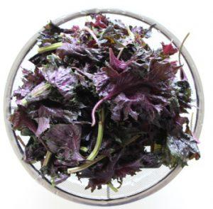 赤紫蘇 レシピマグ